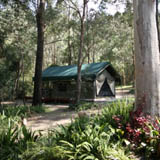 Camping, Caravan Park, Tamborine Mountains, Cedar Creek Falls, National Park