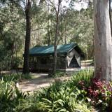 Camping, Caravan Park, Tamborine Mountains, Cedar Creek Falls, National Park