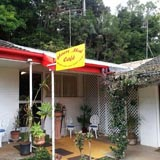 Cafe, Mount Tamborine, Curtis Falls