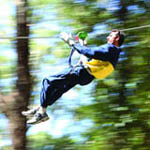 Adventure, Attraction, Flying Fox, High Ropes Course, Challenge