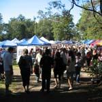 Tamborine Mountain Country Markets