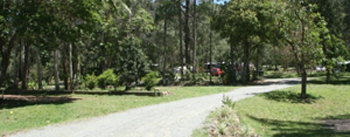 Caravan and Camping, Tamborine National park, Glamping