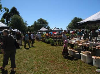 Tamborine Mountain School Ground Markets