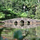 Botanic Gardens Tamborine, Springtime Festival