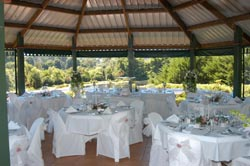 Cedar Creek Estate Weddings, National Park, Mount Tamborine