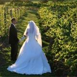 Albert River Winery Weddings