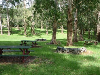 Mount Tambourine, BBQ areas, kids fun, playgrounds, wood fired