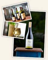 Winery Estate, Chardonnay, Grapes, Cellar Door Tasting