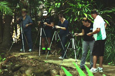 Photography Courses, Workshops and Tuition, Accommodation Tambourine Mtn
