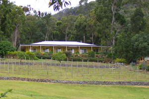 Accommodation Tamborine, Bed and Breakfast, Country Retreat