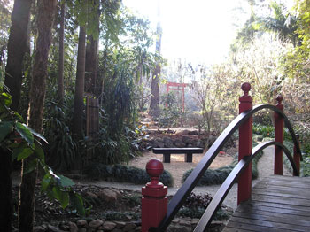 Tamborine Botanical Gardens, Picnic, Walking Tracks