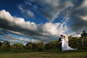 Albert River Weddings, Tamborine House, Aucheflower Homestead