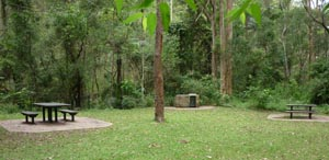 Tamborine Ntional Park, Picnic Area, Kids day out