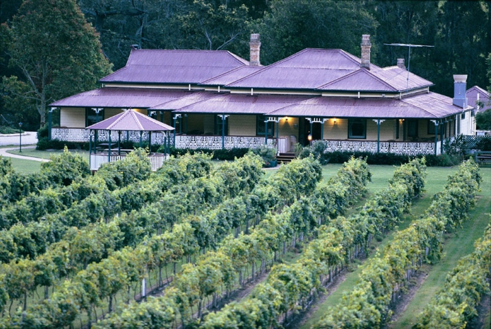 O Reilly S Canungra Valley Vineyards