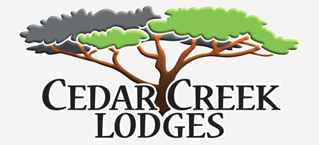 Cedar Creek Lodges, Tamborine Mountain, National Park, Rainforest Weddings