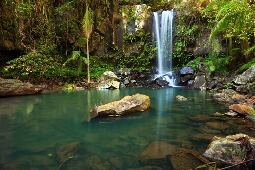 Curtis Falls, Waterfall, Mt Tambourine,