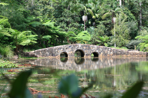 Botanic Gardens, Tamborine Mountain, Things to do, Attraction