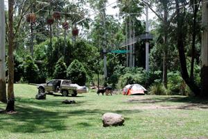 Camping, Thunderbird Park, TM Caravan and Camping