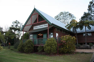 Fine Art and Framing, Tamborine, Artworks, Gallery