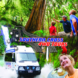 Day Tours Tamborine, Southern Cross Tours, Tamborine National Park
