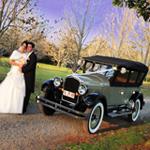 Tamborine Mountain Weddings, Bride and Groom on Tamborine