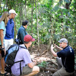Tours on Tamborine, Transport, Sightseeing