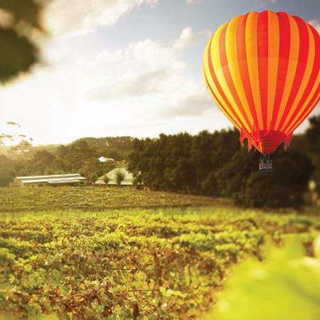 Hot Air Balloon Scenic Rim, Attraction, Gold Coast