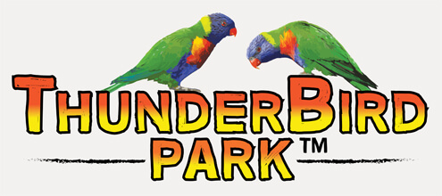 Thunderbird Park, Cedar Creek Lodges, Attractions Tamborine