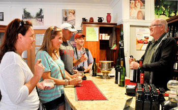 Tamborine Mountain Wine Tasting Tour, National Park