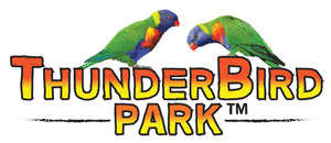 Thunderbird Park, Tamborine Mtn, Themepark, Mini Golf, Laser Skirmish