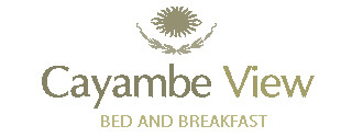 Tamborine Accommodation, Bed and Breakfast, Cayambe View