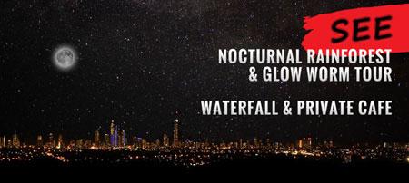 Night Tour, 4WDriving, Glow Worm Spotting,