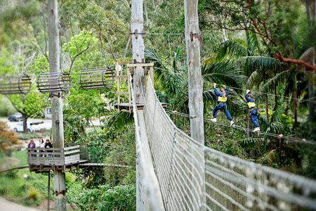 Thunderbird Park, National Park, Adrenalin Action Tamborine