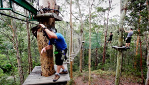 Attractions Tamborine, Tarzan Swing, Rope bridges, Commando Training