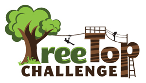 TreeTop Challenge, Mount Tamborine, Attraction