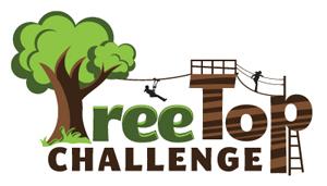 TreeTop Challenge, Mount Tamborine, Attraction