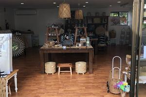 Gallery Walk, Tamborine Mountain, Shopping, Dandelions 3
