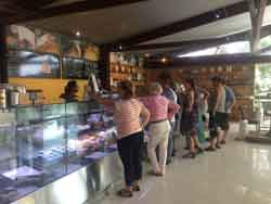 Cheese tasting, Withces Chase Cheese, Gallery Walk Tamborine