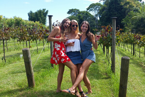 Tamborine Mountain, Wine Tours, Cellar Door Outlets