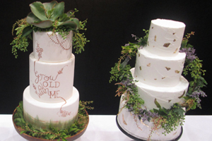 Cakery Box, Wedding Cakes, Tamborine Weddings