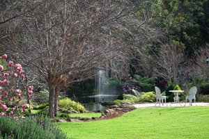 Glenloch Gardens, Weddings Tamborine, Reception and Ceremony Venue, Garden Weddings