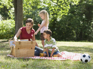 Picnics, BBQs and Playgrounds