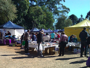 School Ground Markets