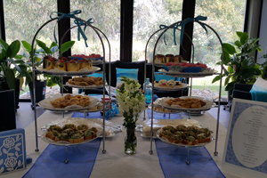 Sugarize Events, Tamborine Weddings, Event Catering, High Teas