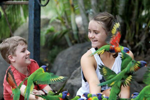 Thunderbird Park, Tamborine Mtn, Attractions, Kids fun