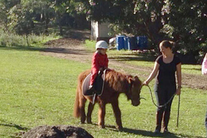 Pony Rides, Tamborine Mountain, Fun for Kids, Pony Trail Rides