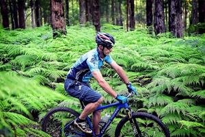 Guanaba Experience, Mountain Biking, Mt Tamborine